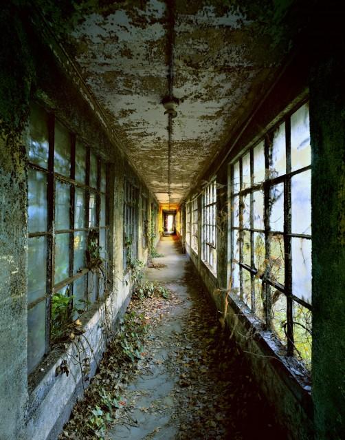 E1 Corridor 9 - Stephen WILKES