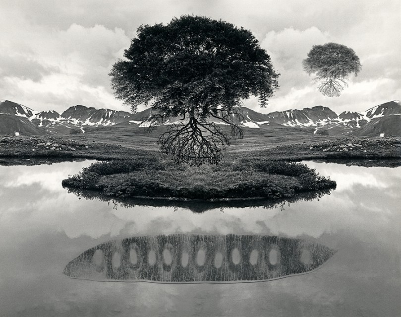 Floating Tree Colorado, 1969 - Jerry UELSMANN