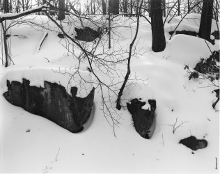 Snow-covered Hillside, 2005