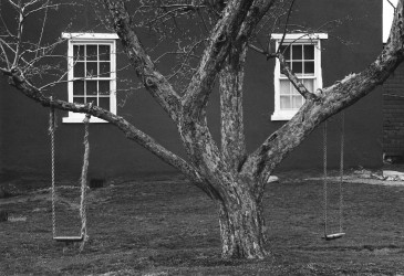 Tree, Swings and Windows, 1966