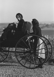 Two Amish Girls, 1966