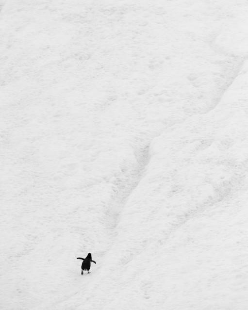 A l'assaut des sommets - Kyriakos KAZIRAS