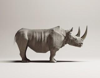 Titanium Rhinoceros