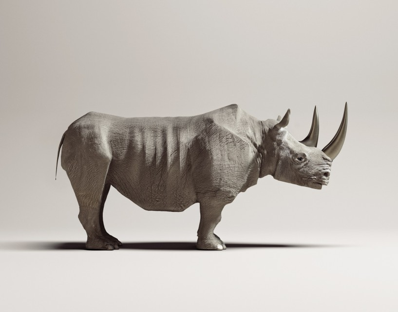 Titanium Rhinoceros - Vincent FOURNIER