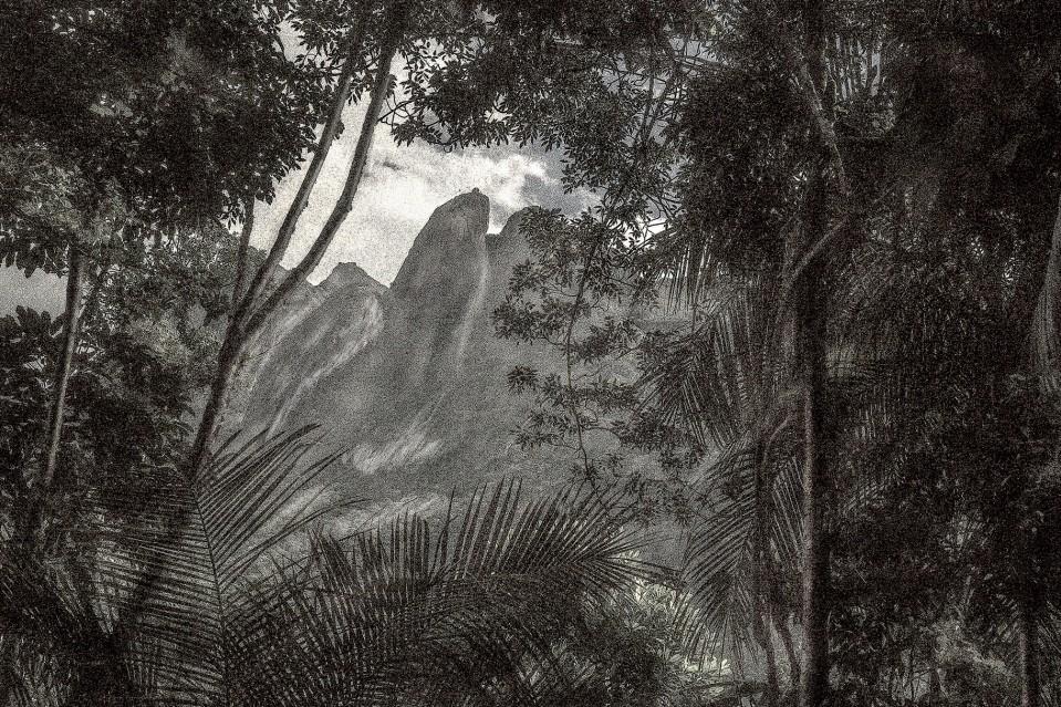 A Picturesques Voyage through Brazil 71 - Cássio VASCONCELLOS