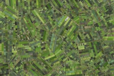 Verde A