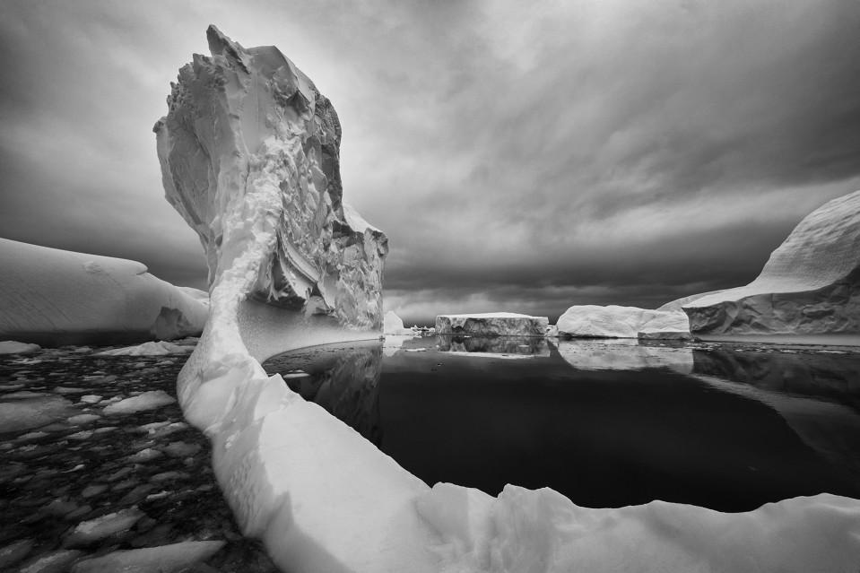Sublime - Paul NICKLEN