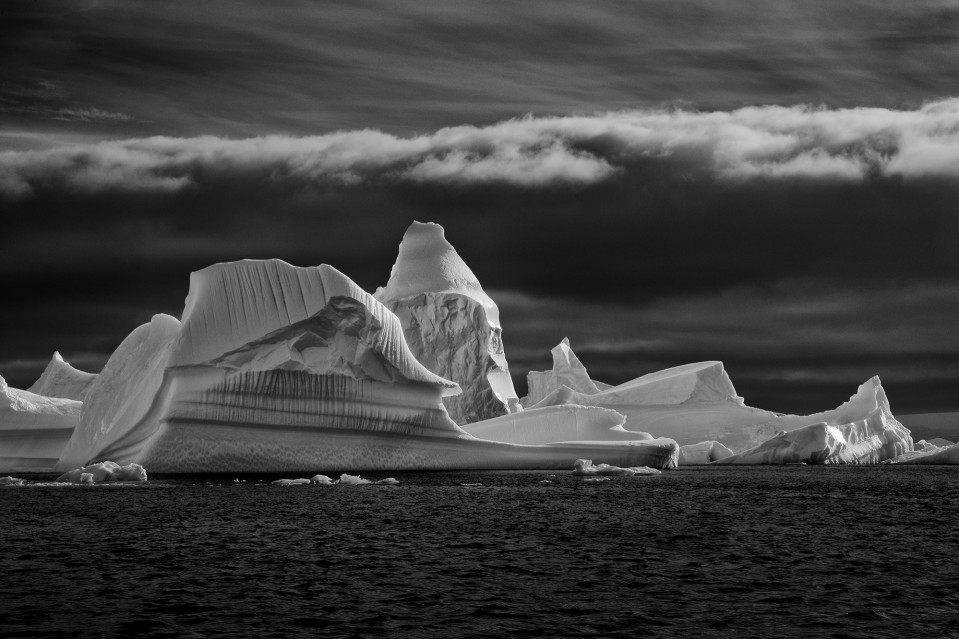 Grounded - Paul NICKLEN