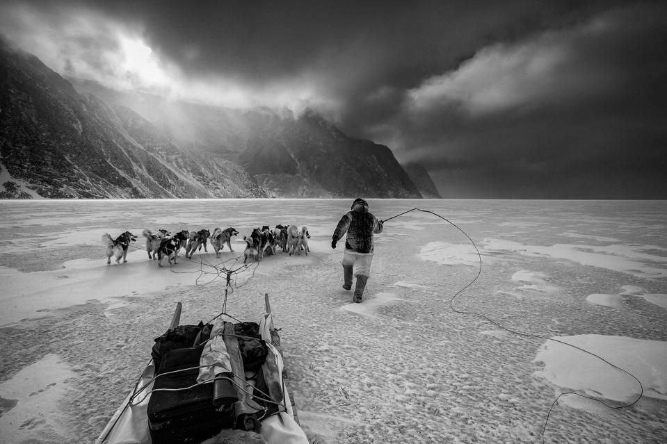 Arctic Journey - Paul NICKLEN