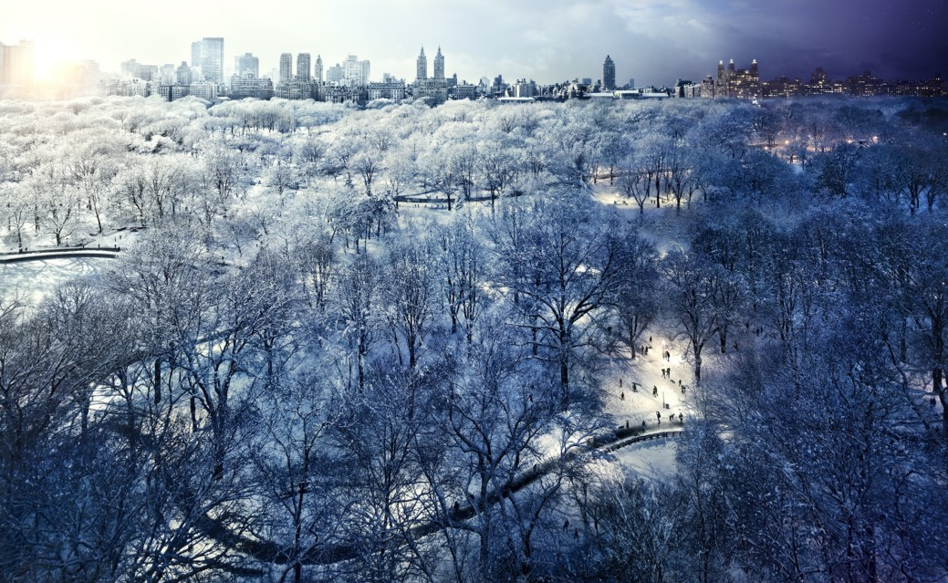 Central Park Snow, NYC - Stephen WILKES