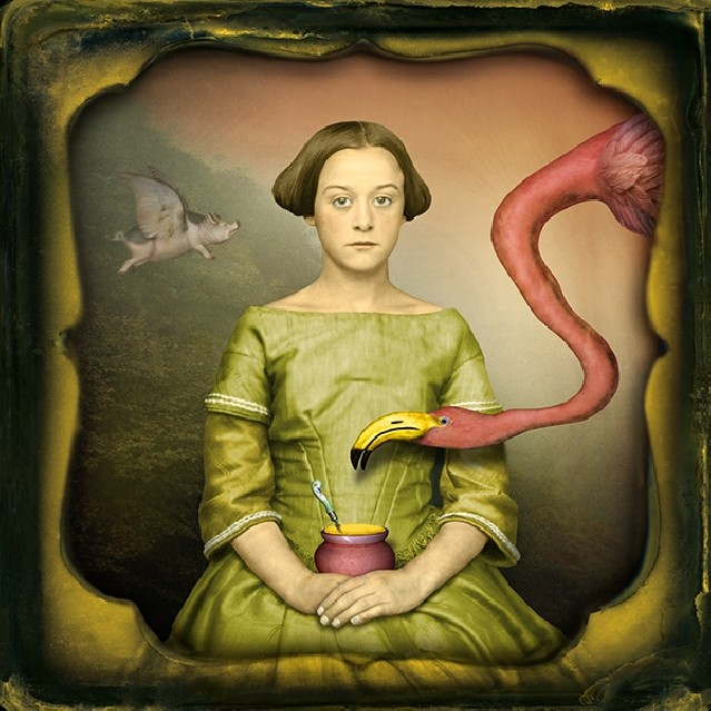 Birds of a Feather - Maggie TAYLOR