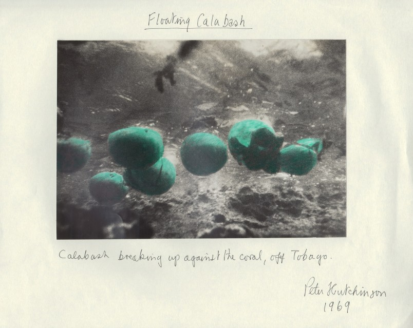 Floating Calabash, 1969 - Peter HUTCHINSON
