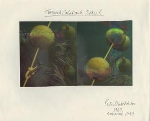 Threaded Calabash Detail, 1969-1999