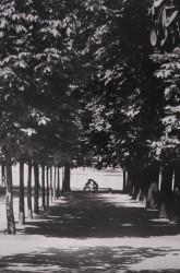 Jardin des Tuileries, 1989