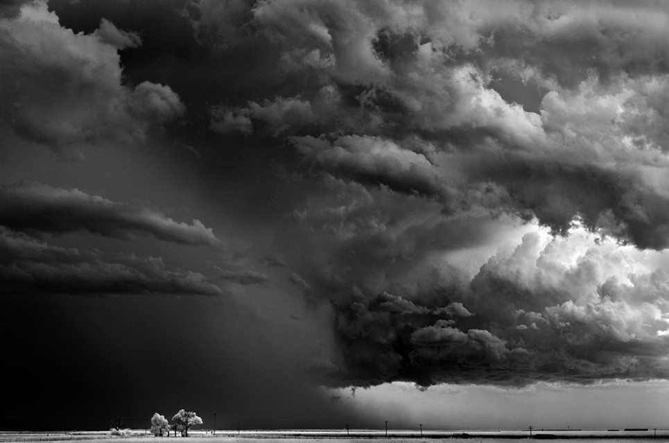Trees-Clouds - Mitch DOBROWNER