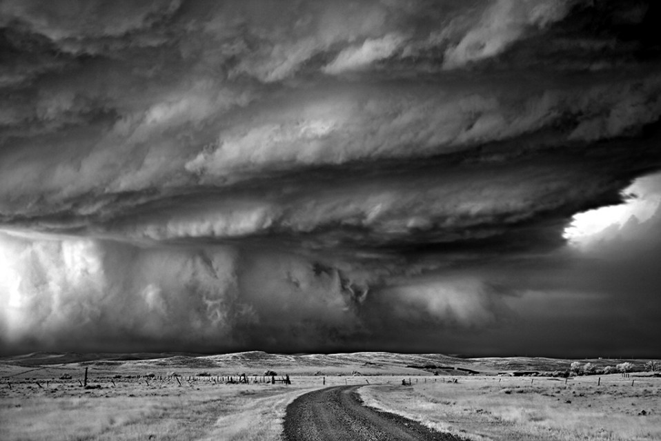 Bear's Claw - Mitch DOBROWNER