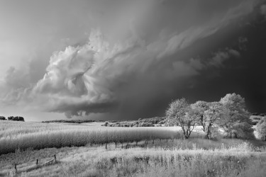 Storm, Field and Trees