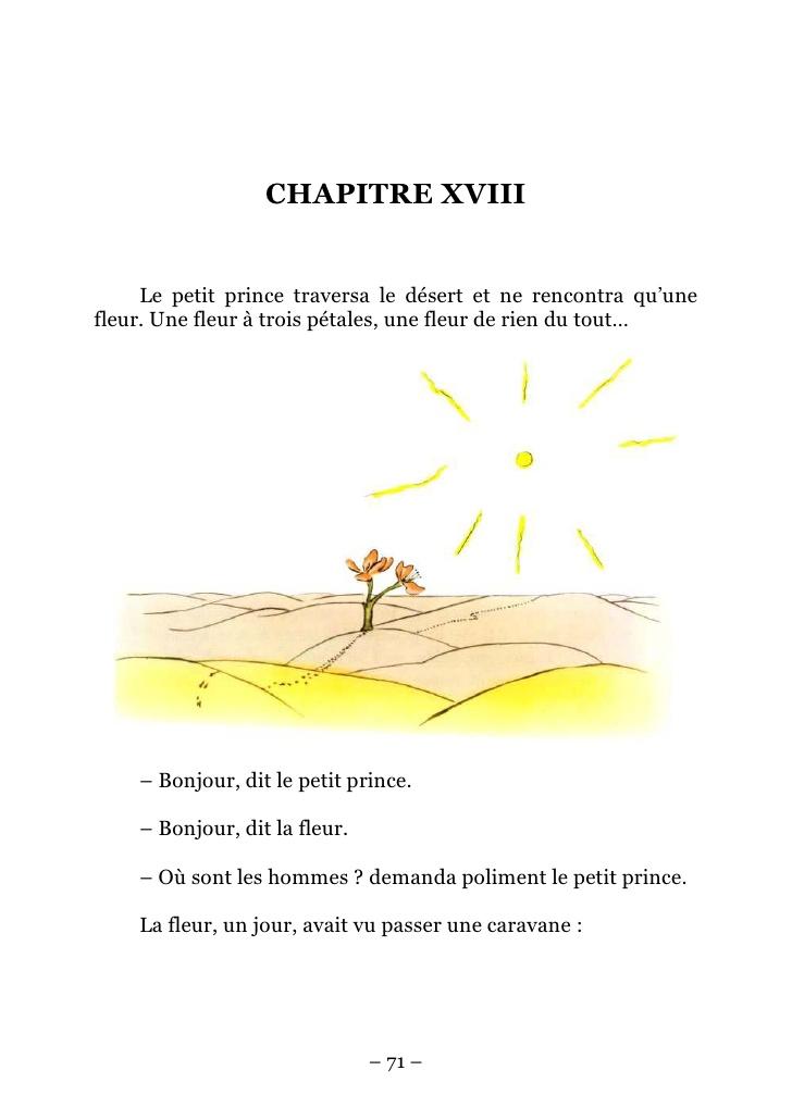 Le Petit Prince de Saint-Exupéry et les fleurs